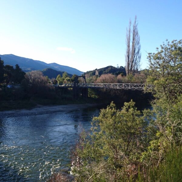 Explore Motueka Valley During Your Stay