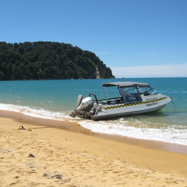 Explore Abel Tasman During Your Stay